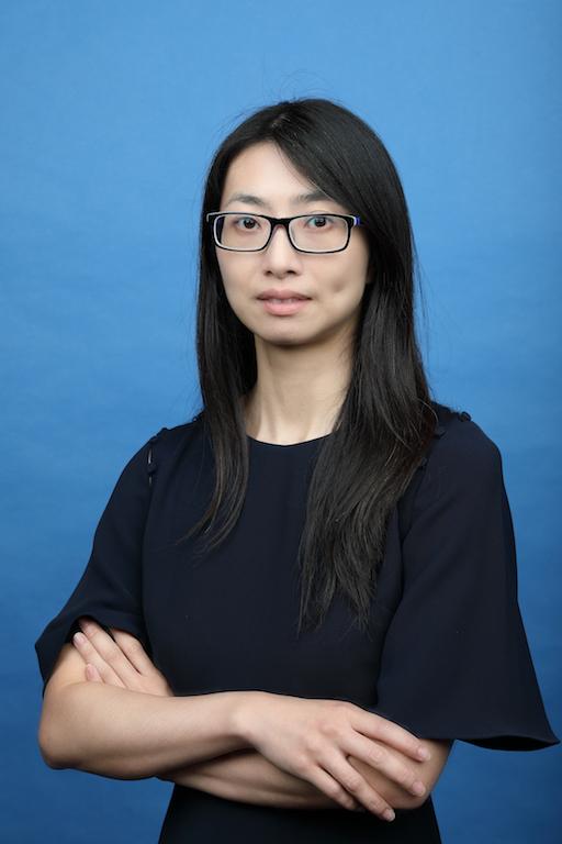 Professor Wendy Wan Yee HUI